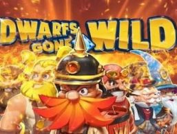 Play For Free: Dwarfs Gone Wild Slot