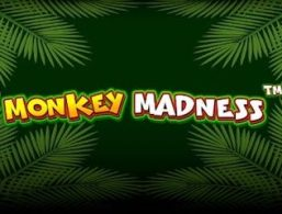 Play For Free: Monkey Madness Slot