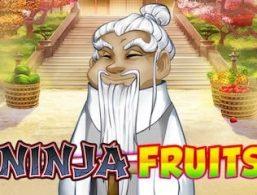 Play For Free: Ninja Fruits Slot