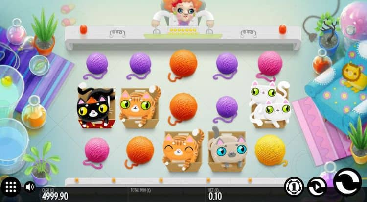 not enough kittens india slot