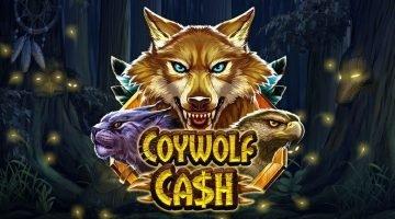 screenshot of rizk coywolf cash