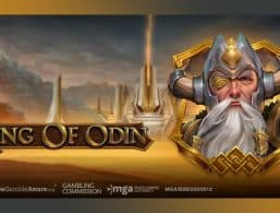 Review of Ring of Odin Slot